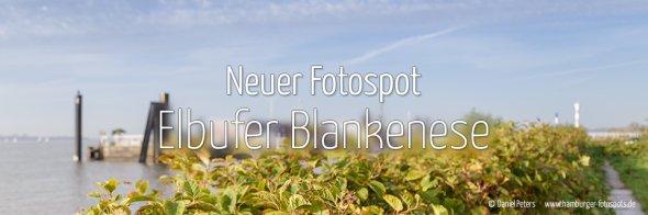 Elbufer Blankenese